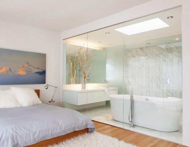 Міжкімнатні перегородки зі скла: 80 дизайнерських варіантів зонування квартири