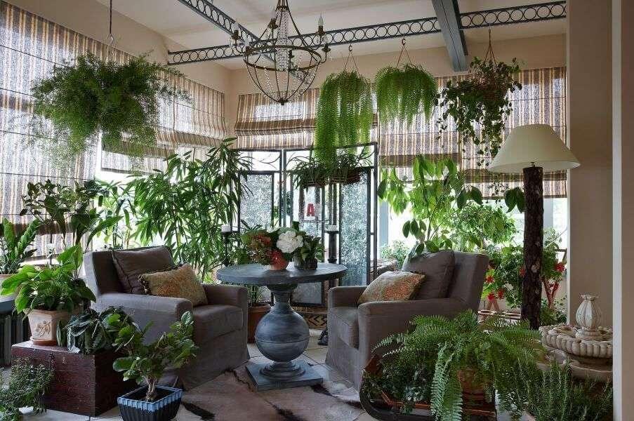 Проект будинку з зимовим садом (51 фото): коли затишно і людям, і рослинам