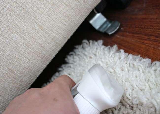 Як позбутися від молі в квартирі: огляд всіх відомих засобів