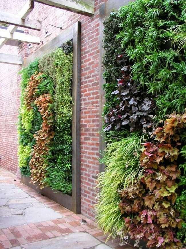 Гейхера: грамотне використання в ландшафтному дизайні та рекомендації по догляду