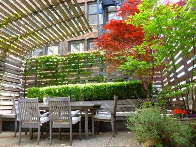 Вюнкі рослини для саду: 65 ідей, як зробити дизайн свого ділянки неповторним (фото)